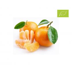 Mandarina, el kg (Alpujarra)