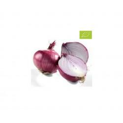 Cebolla Roja, 1/2 kg...