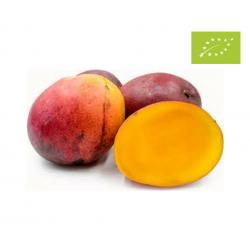 Mango  Osteen, 0.5 kg aprox...