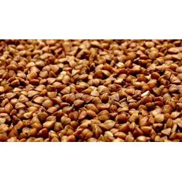 Grano de trigo sarraceno,...
