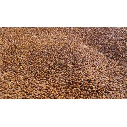 Grano de quinoa roja, 500 gr.