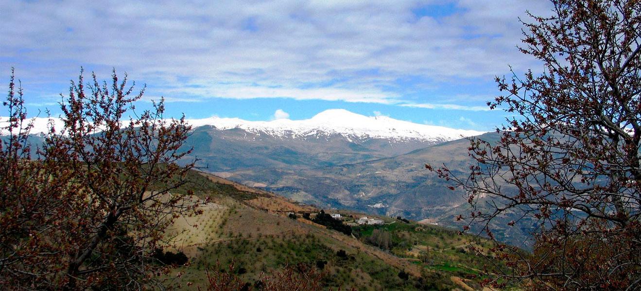 bello_paisaje_nevado (1).jpg